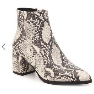 Madden Girl Dafni Booties in Snakeskin